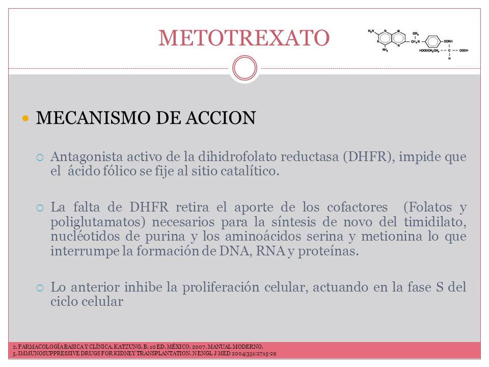 METOTREXATO FARMACOCINÉTICA Vía oral, intravenosa, subcutánea o intramuscular 70% se absorbe después de la administración por vía oral.