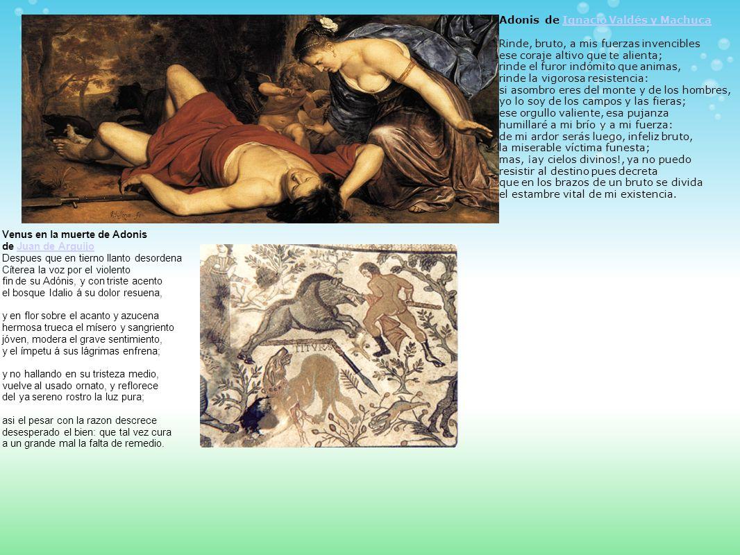 Venus en la muerte de Adonis de Juan de Arguijo Despues que en tierno llanto desordena Cíterea la voz por el violento fin de su Adónis, y con triste a