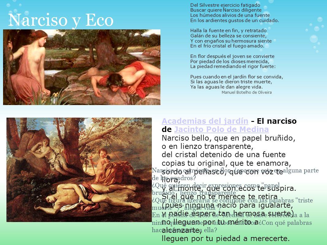 Narciso y Eco Del Silvestre ejercicio fatigado Buscar quiere Narciso diligente Los húmedos alivios de una fuente En los ardientes gustos de un cuidado