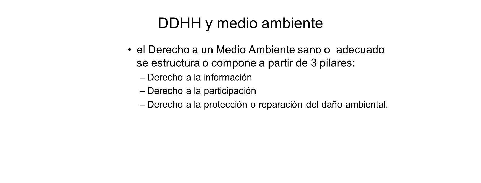 DDHH y medio ambiente el Derecho a un Medio Ambiente sano o adecuado se estructura o compone a partir de 3 pilares: –Derecho a la información –Derecho a la participación –Derecho a la protección o reparación del daño ambiental.