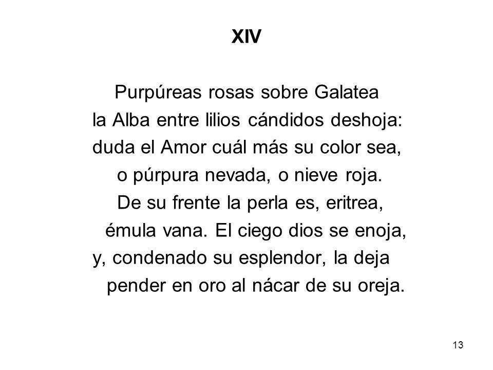 13 XIV Purpúreas rosas sobre Galatea la Alba entre lilios cándidos deshoja: duda el Amor cuál más su color sea, o púrpura nevada, o nieve roja. De su