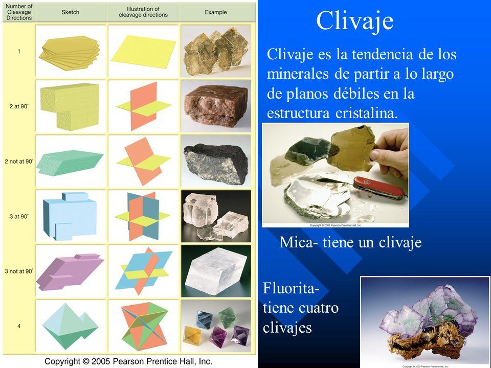 Clivaje Clivaje es la tendencia de los minerales de partir a lo largo de planos débiles en la estructura cristalina. Mica- tiene un clivaje Fluorita-