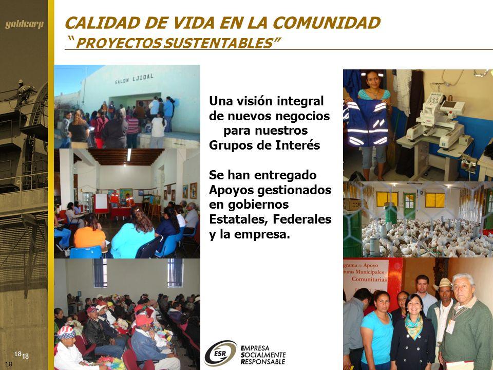 18 CALIDAD DE VIDA EN LA COMUNIDAD PROYECTOS SUSTENTABLES Una visión integral de nuevos negocios para nuestros Grupos de Interés Se han entregado Apoy