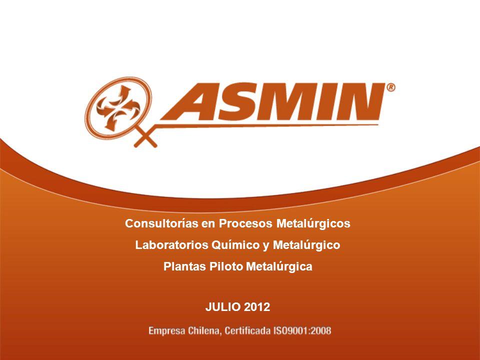 Consultorías en Procesos Metalúrgicos Laboratorios Químico y Metalúrgico Plantas Piloto Metalúrgica JULIO 2012