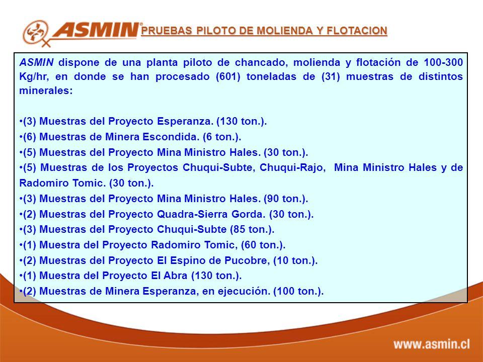 ASMIN dispone de una planta piloto de chancado, molienda y flotación de 100-300 Kg/hr, en donde se han procesado (601) toneladas de (31) muestras de d