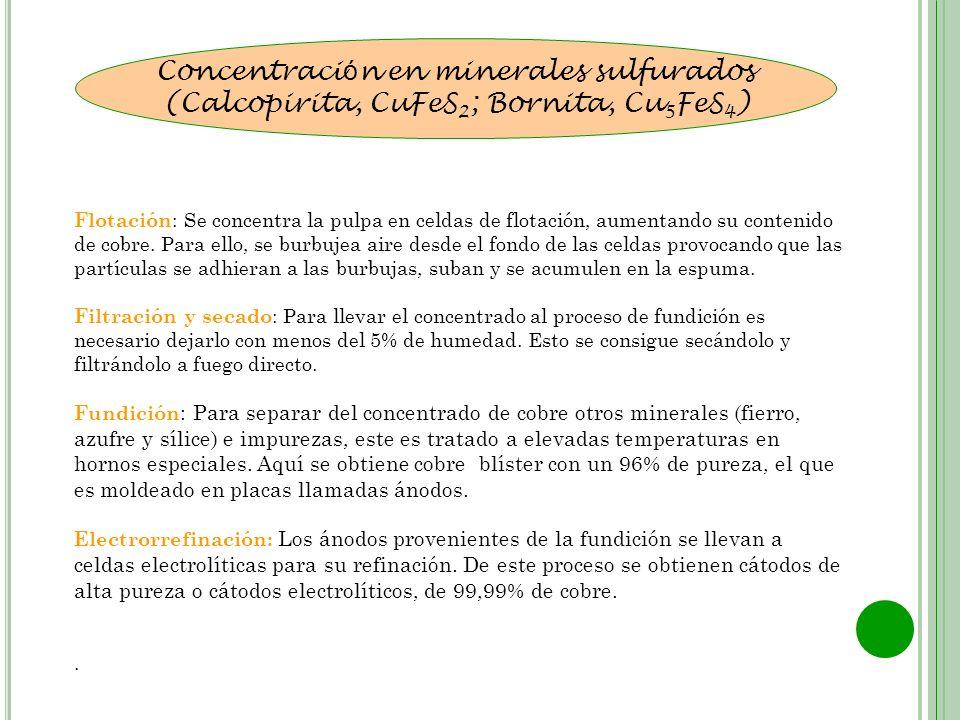 Concentraci ó n en minerales sulfurados (Calcopirita, CuFeS 2 ; Bornita, Cu 5 FeS 4 ) Flotación : Se concentra la pulpa en celdas de flotación, aument