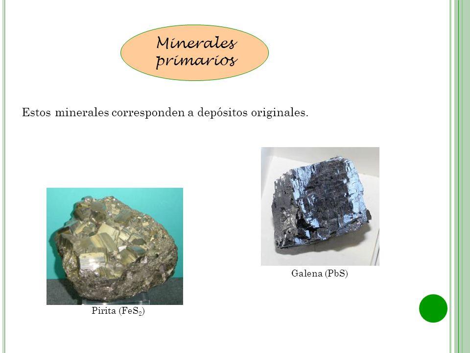 Estos minerales corresponden a depósitos originales. Minerales primarios Pirita (FeS 2 ) Galena (PbS)