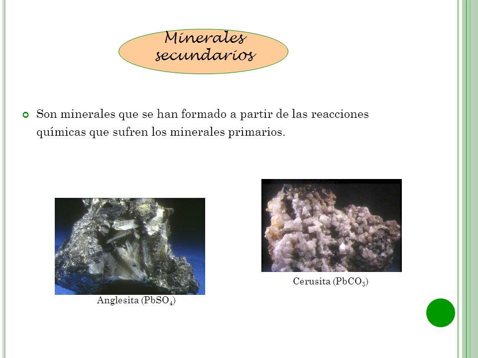 Son minerales que se han formado a partir de las reacciones químicas que sufren los minerales primarios. Minerales secundarios Anglesita (PbSO 4 ) Cer