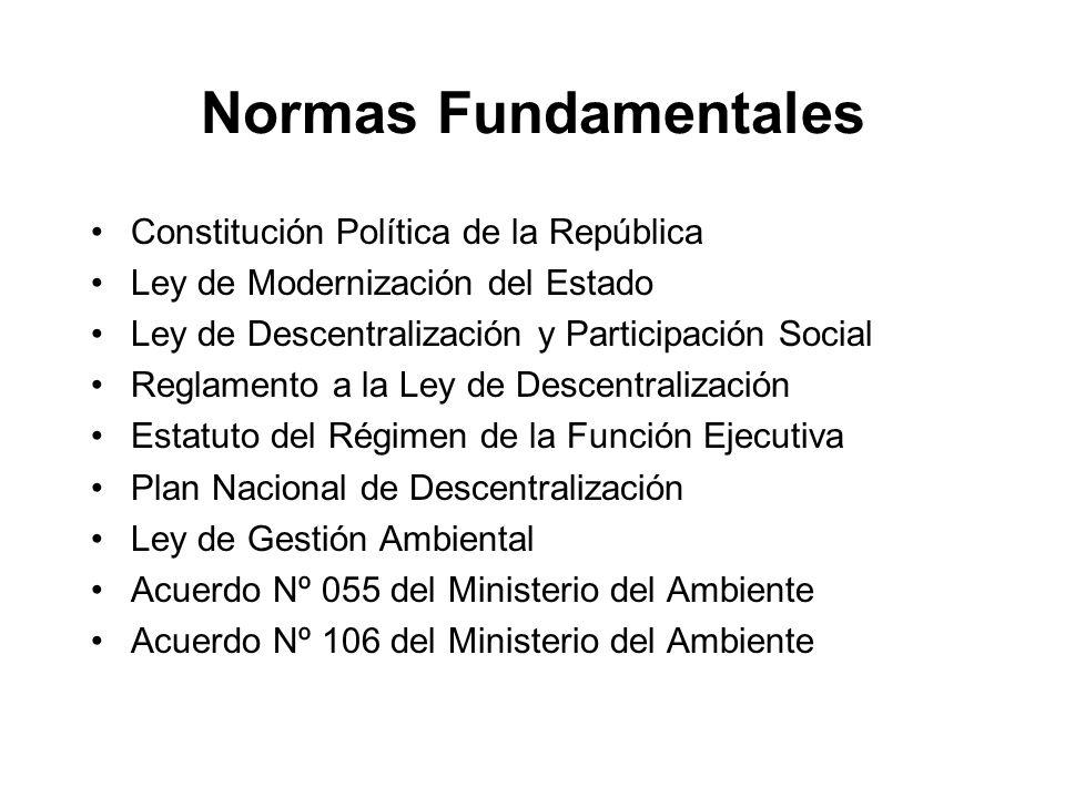 Normas Fundamentales Constitución Política de la República Ley de Modernización del Estado Ley de Descentralización y Participación Social Reglamento