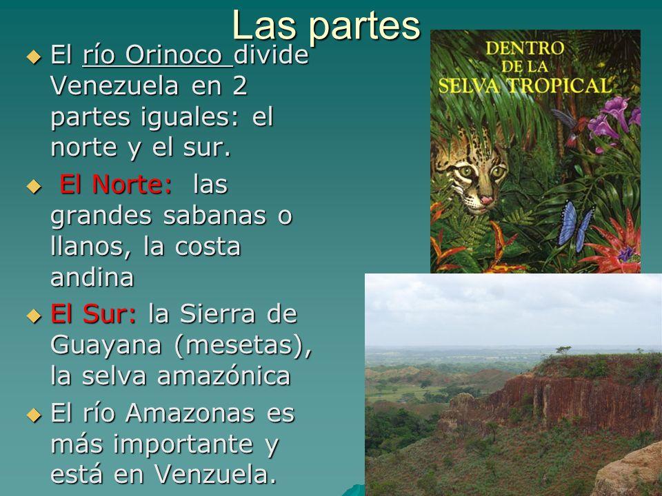 La Sierra de la Guayana Es una vasta región (al sur) remota de mesetas bellas de arenisca (sandstone).