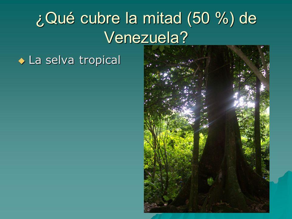 ¿Qué cubre la mitad (50 %) de Venezuela? La selva tropical La selva tropical