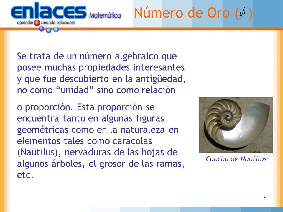7 Número de Oro ( ) Se trata de un número algebraico que posee muchas propiedades interesantes y que fue descubierto en la antigüedad, no como unidad
