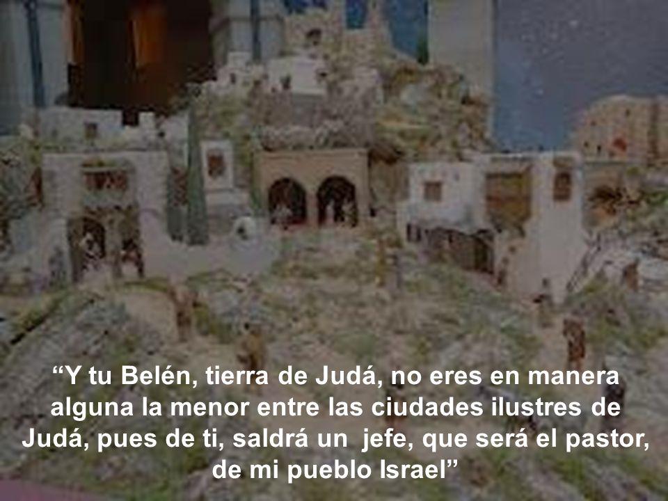 Y tu Belén, tierra de Judá, no eres en manera alguna la menor entre las ciudades ilustres de Judá, pues de ti, saldrá un jefe, que será el pastor, de mi pueblo Israel