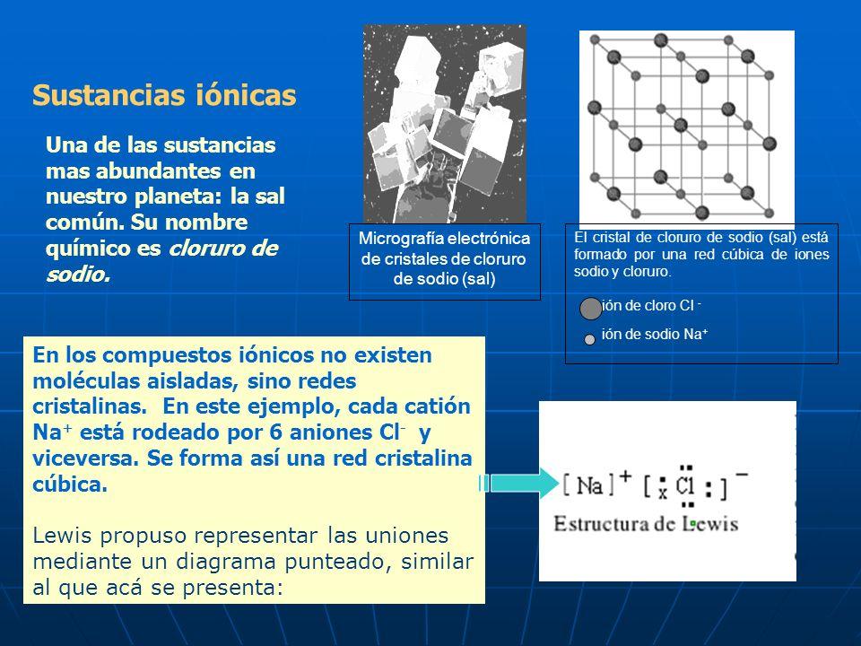 Sustancias Compuestas Agua Moléculas H 2 O Amoníaco Moléculas NH 3 Cloruro de hidrógeno Moléculas HCl Sal común: cloruro de sodio NaCl Red cristalina