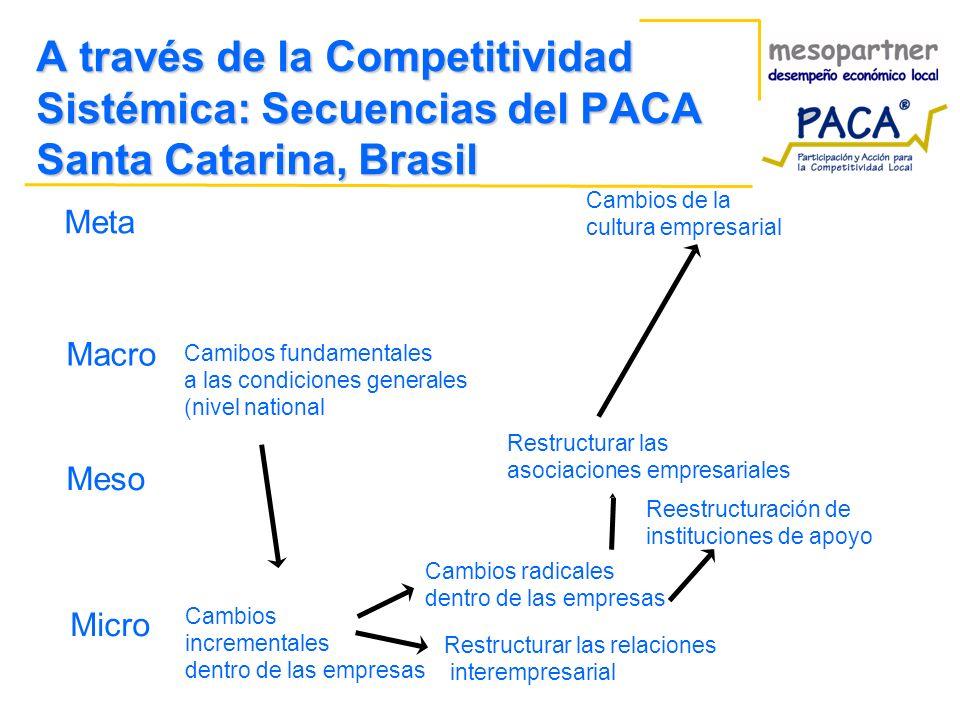 A través de la Competitividad Sistémica: Secuencias del PACA Santa Catarina, Brasil Meta Macro Meso Micro Camibos fundamentales a las condiciones gene