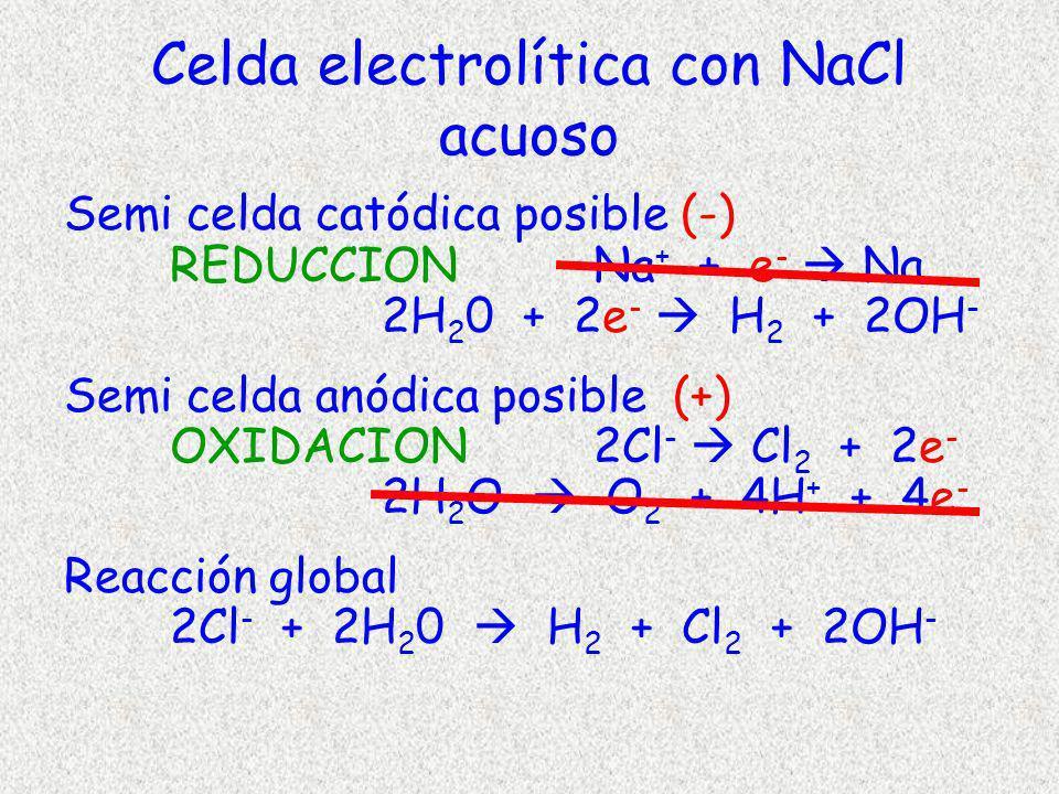 Celda electrolítica con NaCl acuoso Semi celda catódica posible (-) REDUCCION Na + + e - Na 2H 2 0 + 2e - H 2 + 2OH - Semi celda anódica posible (+) O