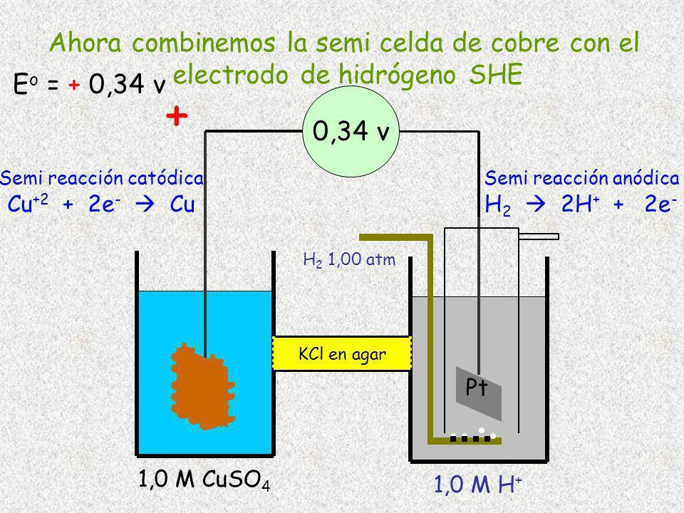 H 2 1,00 atm Pt 1,0 M H + Cu 1,0 M CuSO 4 0,34 v Semi reacción catódica Cu +2 + 2e - Cu Semi reacción anódica H 2 2H + + 2e - KCl en agar + Ahora comb