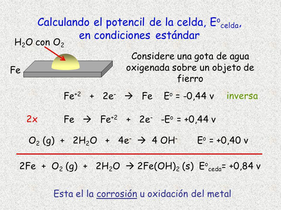 Calculando el potencil de la celda, E o celda, en condiciones estándar Fe +2 + 2e - Fe E o = -0,44 v O 2 (g) + 2H 2 O + 4e - 4 OH - E o = +0,40 v Esta