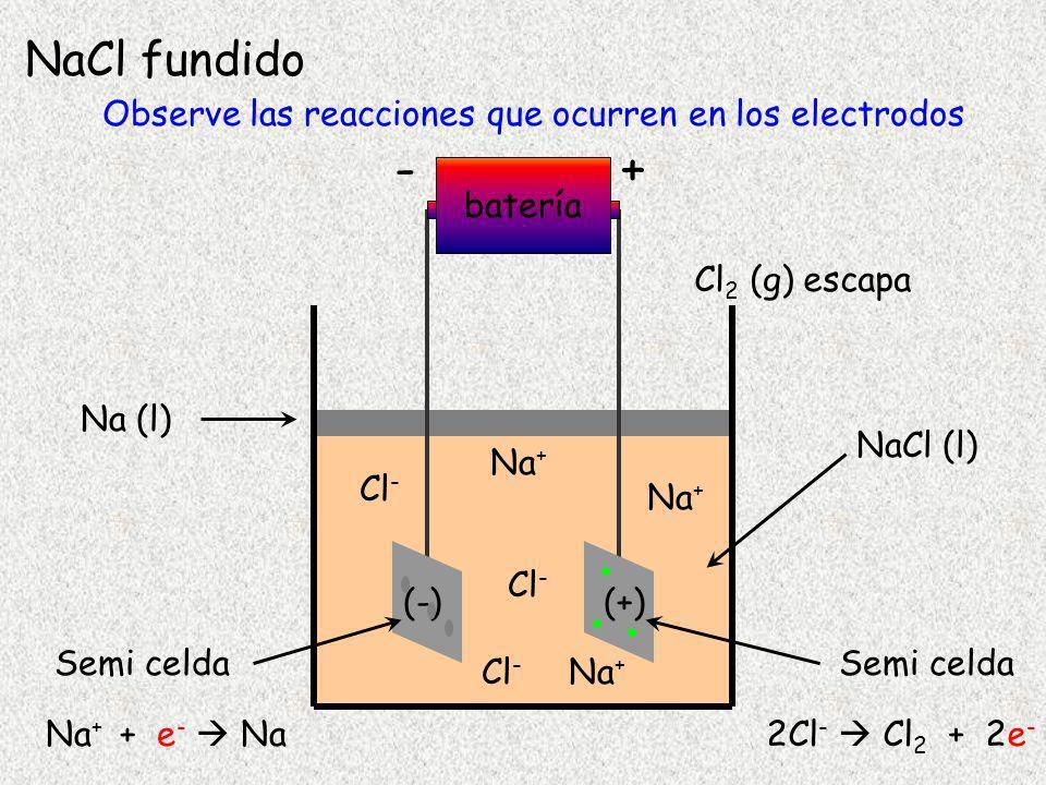 +- Batería e-e- e-e- NaCl (l) (-)(+) cátodo ánodo NaCl fundido Na + Cl - Na + Na + + e - Na 2Cl - Cl 2 + 2e - cationes migran hacia el electrodo (-) aniones migran hacia el electrodo (+) A nivel microscópico