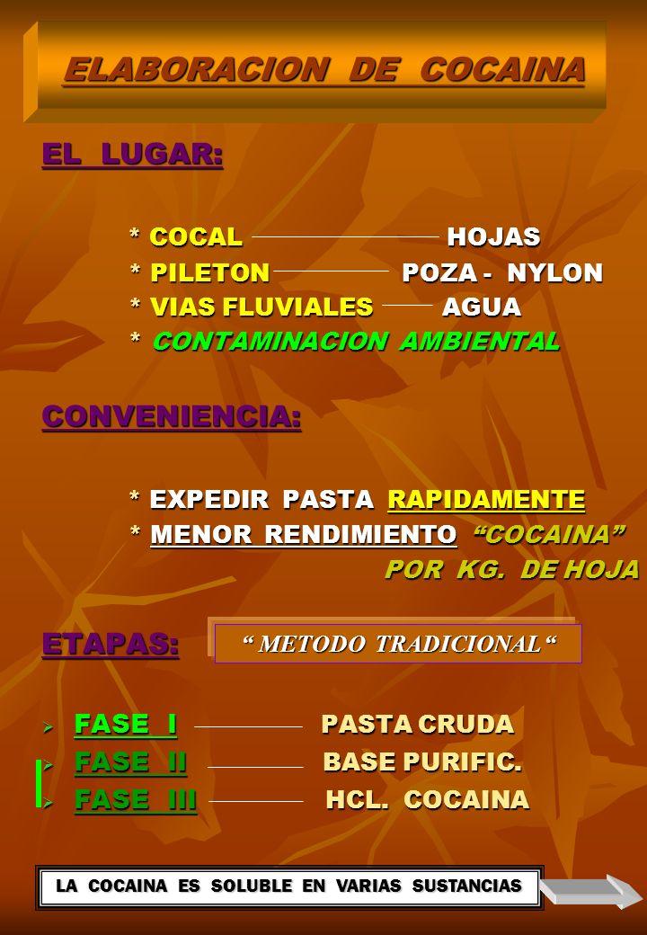 EL LUGAR: * COCAL HOJAS * COCAL HOJAS * PILETON POZA - NYLON * PILETON POZA - NYLON * VIAS FLUVIALES AGUA * VIAS FLUVIALES AGUA * CONTAMINACION AMBIENTAL * CONTAMINACION AMBIENTALCONVENIENCIA: * EXPEDIR PASTA RAPIDAMENTE * EXPEDIR PASTA RAPIDAMENTE * MENOR RENDIMIENTO COCAINA * MENOR RENDIMIENTO COCAINA POR KG.