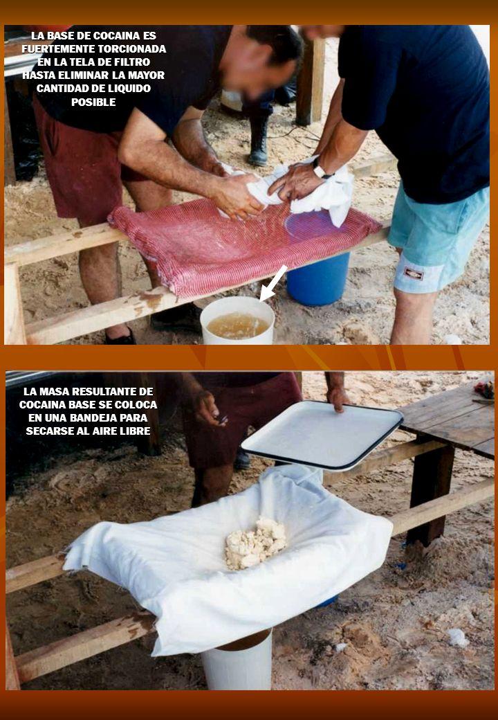LA BASE DE COCAINA ES FUERTEMENTE TORCIONADA EN LA TELA DE FILTRO HASTA ELIMINAR LA MAYOR CANTIDAD DE LIQUIDO POSIBLE LA MASA RESULTANTE DE COCAINA BASE SE COLOCA EN UNA BANDEJA PARA SECARSE AL AIRE LIBRE