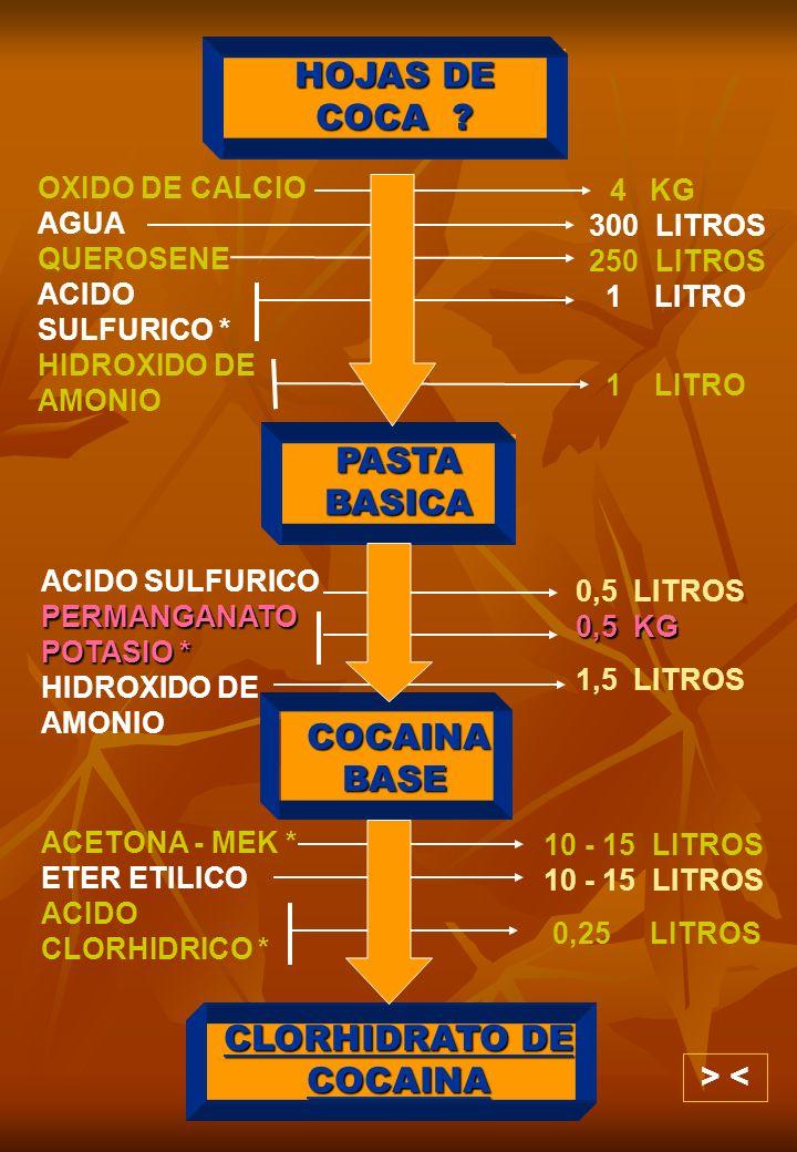 HOJAS DE COCA ? PASTA BASICA COCAINA BASE CLORHIDRATO DE COCAINA OXIDO DE CALCIO AGUA QUEROSENE ACIDO SULFURICO * HIDROXIDO DE AMONIO 4 KG 300 LITROS