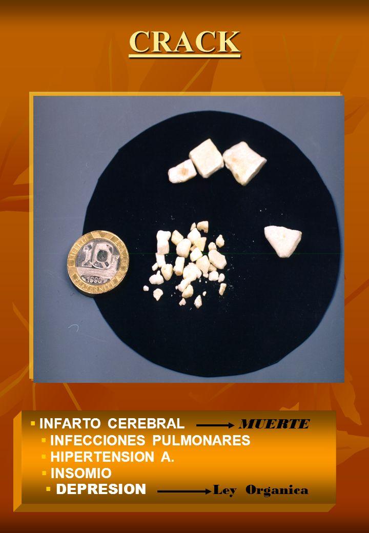 CRACK INFARTO CEREBRAL MUERTE INFECCIONES PULMONARES HIPERTENSION A. INSOMIO DEPRESION Ley Organica
