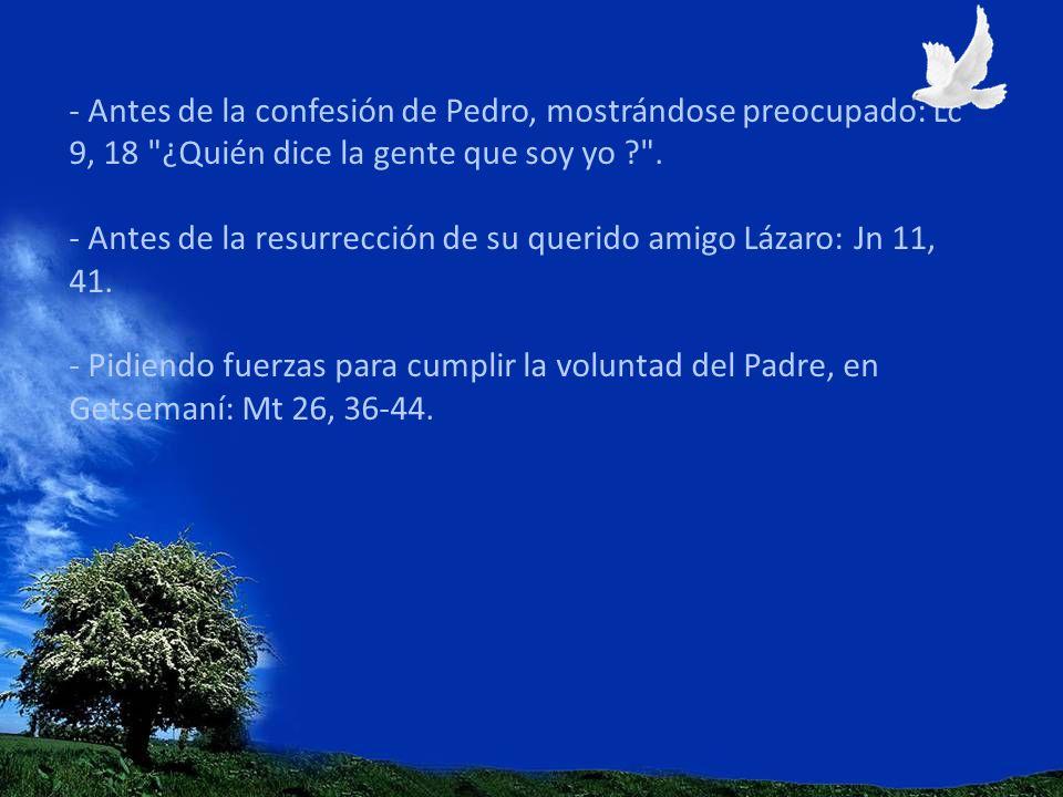 - Antes de la confesión de Pedro, mostrándose preocupado: Lc 9, 18