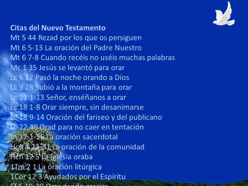 Citas del Nuevo Testamento Mt 5 44 Rezad por los que os persiguen Mt 6 5-13 La oración del Padre Nuestro Mt 6 7-8 Cuando recéis no uséis muchas palabr