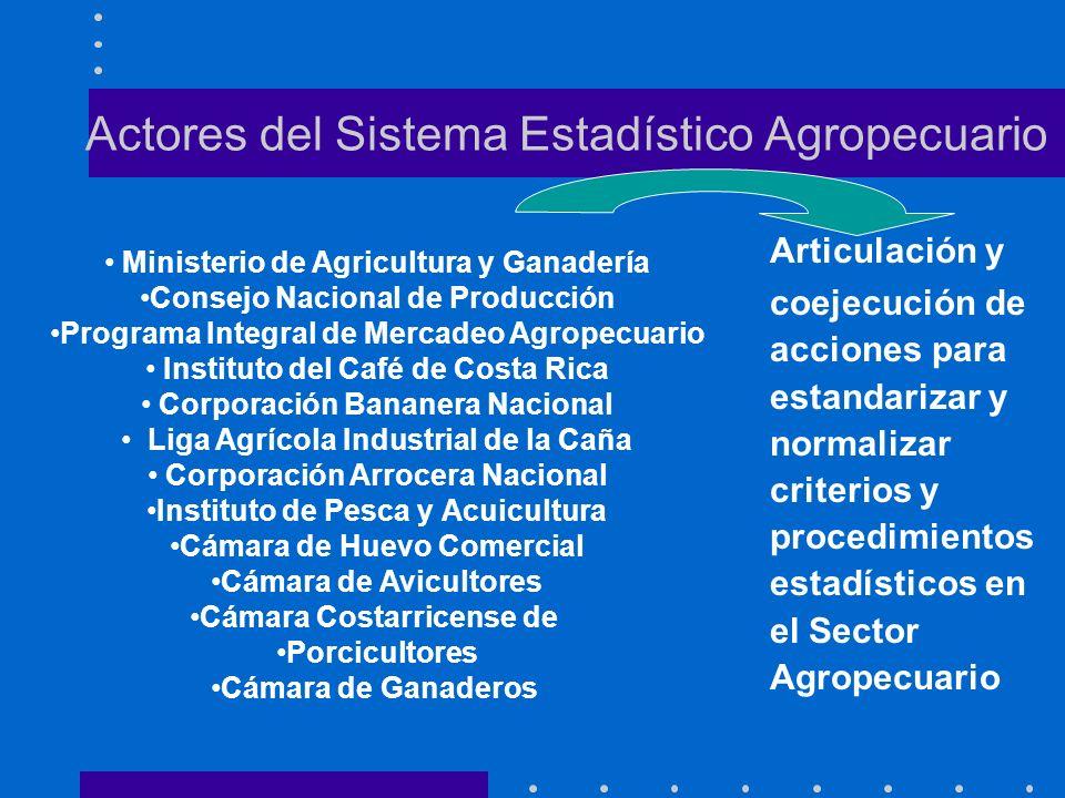 Actores del Sistema Estadístico Agropecuario Articulación y coejecución de acciones para estandarizar y normalizar criterios y procedimientos estadíst