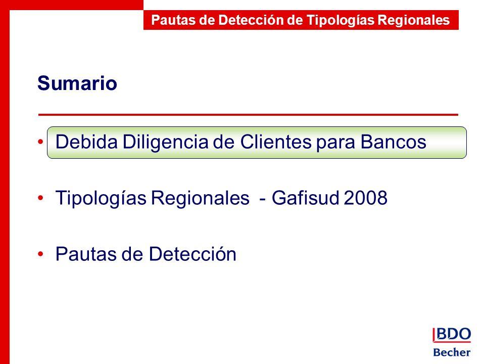 Sumario Pautas de Detección de Tipologías Regionales Debida Diligencia de Clientes para Bancos Tipologías Regionales - Gafisud 2008 Pautas de Detecció