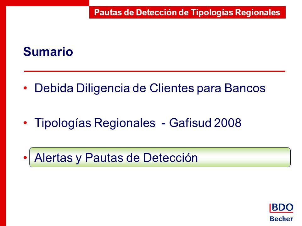 Sumario Pautas de Detección de Tipologías Regionales Debida Diligencia de Clientes para Bancos Tipologías Regionales - Gafisud 2008 Alertas y Pautas d
