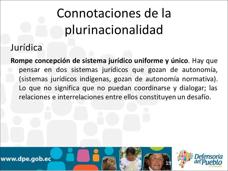 19 Jurídica Rompe concepción de sistema jurídico uniforme y único.