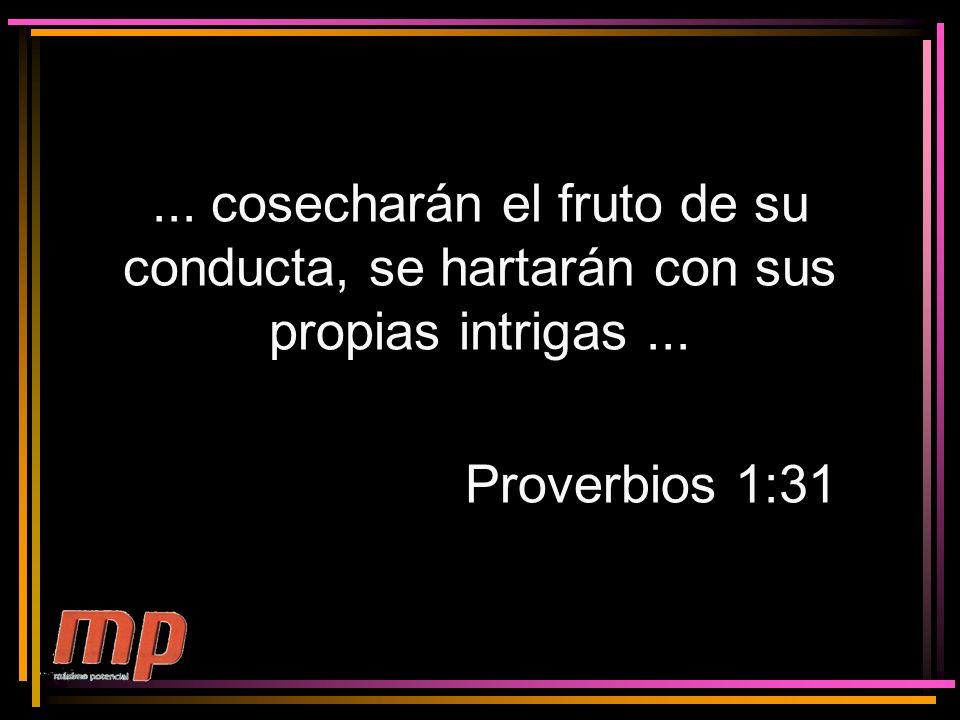 ... cosecharán el fruto de su conducta, se hartarán con sus propias intrigas... Proverbios 1:31
