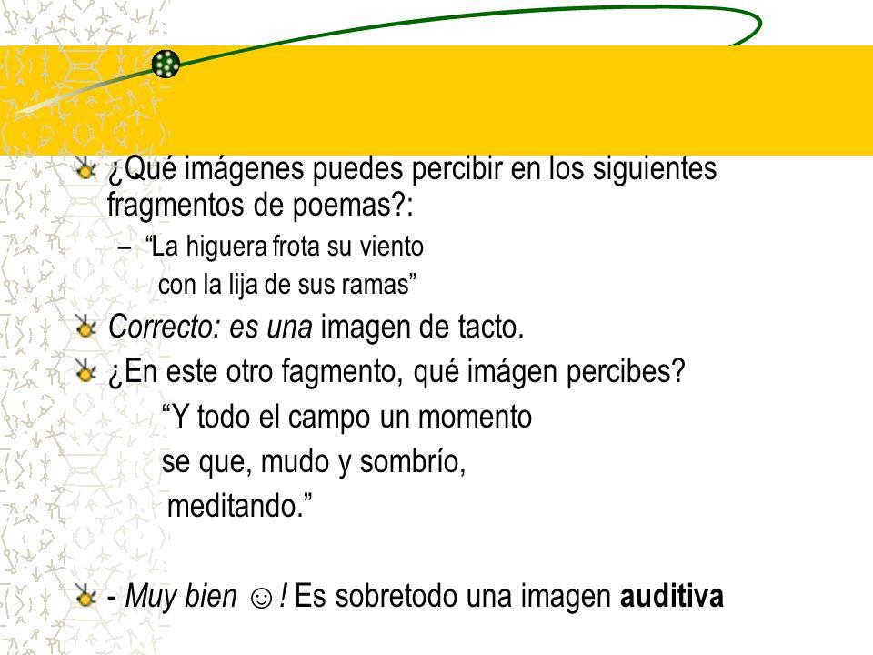 ¿Qué imágenes puedes percibir en los siguientes fragmentos de poemas?: –La higuera frota su viento con la lija de sus ramas Correcto: es una imagen de tacto.