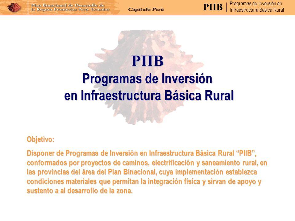 PIIB Programas de Inversión en Infraestructura Básica Rural en Infraestructura Básica Rural Objetivo: Disponer de Programas de Inversión en Infraestru