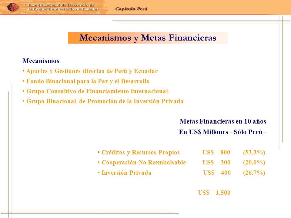 Metas Financieras en 10 años En US$ Millones - Sólo Perú - Créditos y Recursos Propios US$ 800 (53.3%) Cooperación No Reembolsable US$ 300 (20.0%) Inv