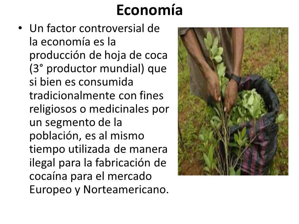 Economía Un factor controversial de la economía es la producción de hoja de coca (3° productor mundial) que si bien es consumida tradicionalmente con