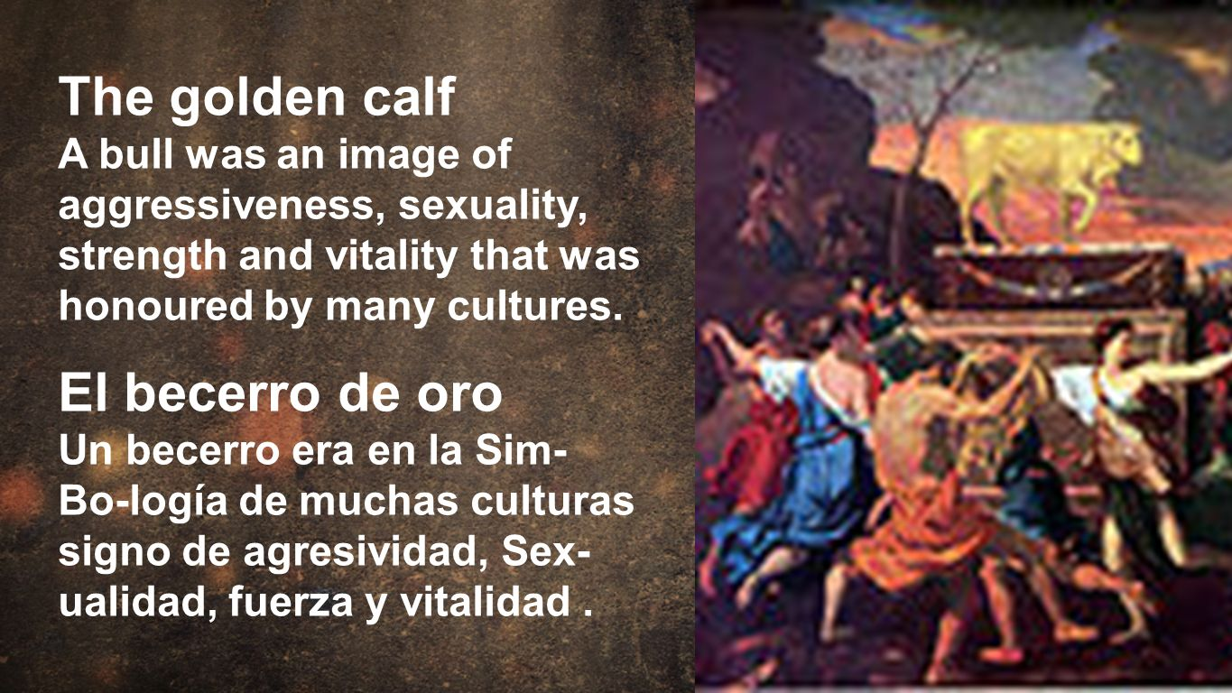 Moses The golden calf A bull was an image of aggressiveness, sexuality, strength and vitality that was honoured by many cultures. El becerro de oro Un