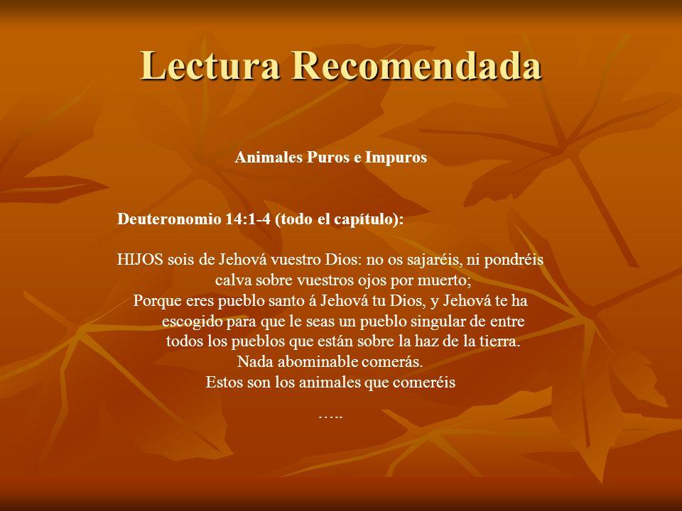 Lectura Recomendada Animales Puros e Impuros Deuteronomio 14:1-4 (todo el capítulo): HIJOS sois de Jehová vuestro Dios: no os sajaréis, ni pondréis ca