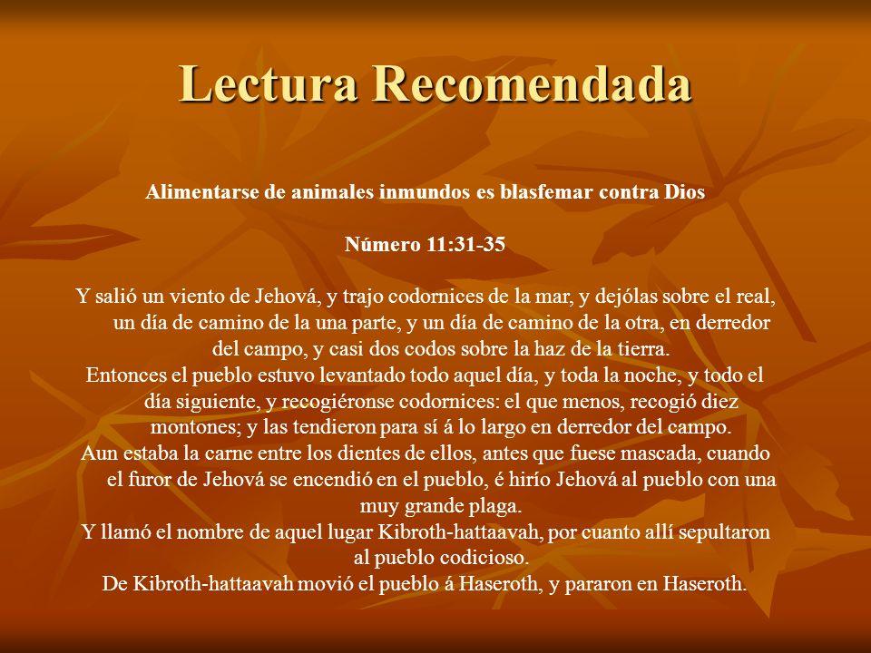 Lectura Recomendada Alimentarse de animales inmundos es blasfemar contra Dios Número 11:31-35 Y salió un viento de Jehová, y trajo codornices de la ma