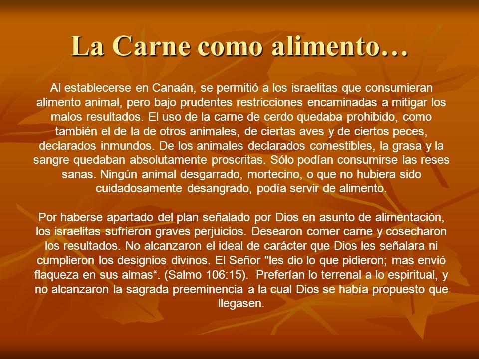 La Carne como alimento… Al establecerse en Canaán, se permitió a los israelitas que consumieran alimento animal, pero bajo prudentes restricciones enc