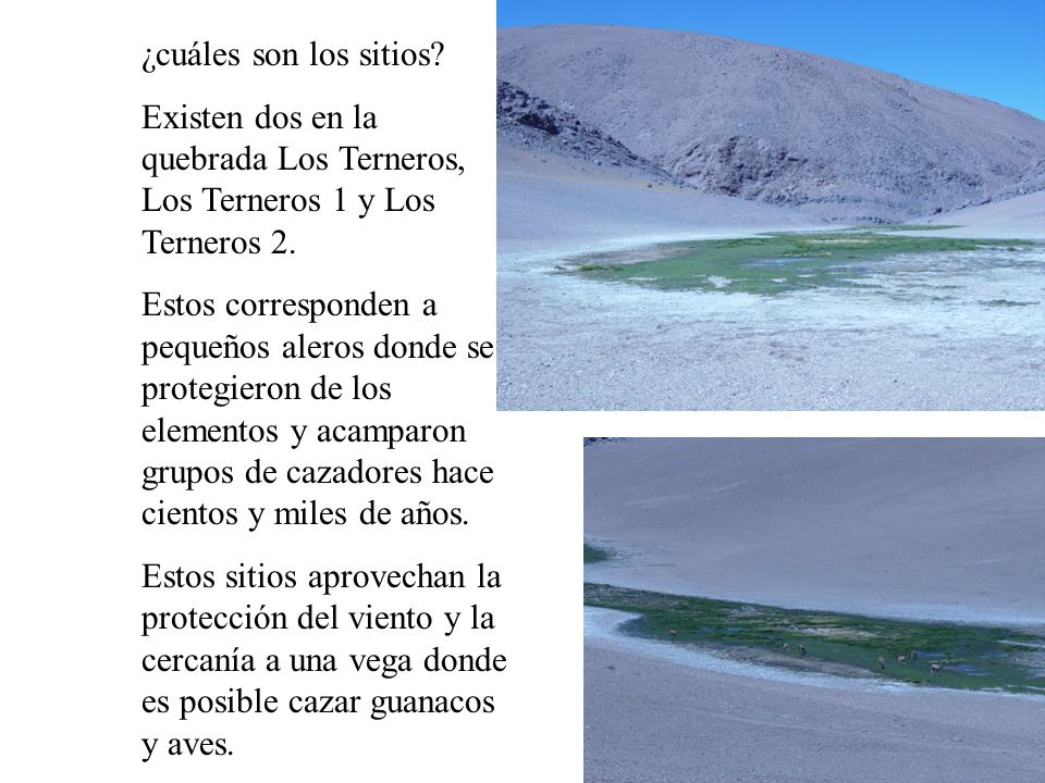 ¿cuáles son los sitios. Existen dos en la quebrada Los Terneros, Los Terneros 1 y Los Terneros 2.