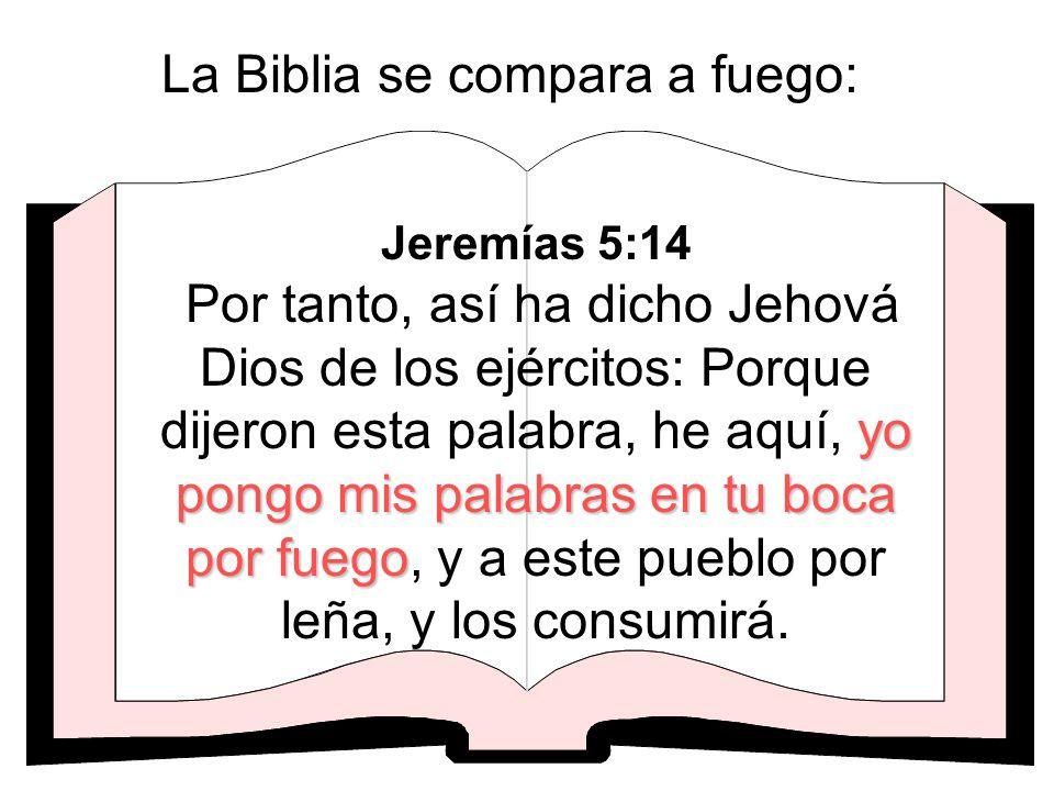 La Biblia se compara a fuego: yo pongo mis palabras en tu boca por fuego Jeremías 5:14 Por tanto, así ha dicho Jehová Dios de los ejércitos: Porque di