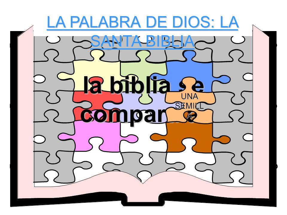 LA PALABRA DE DIOS: LA SANTA BIBLIA la biblia se compara a- UNA SEMILL A