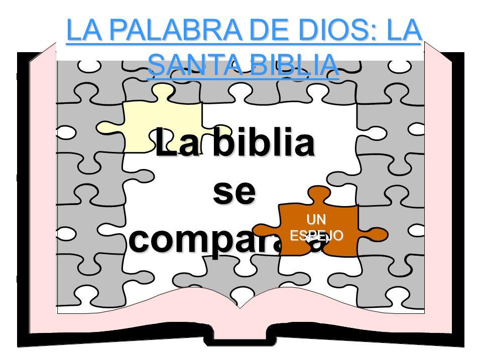 La biblia se compara a- UN ESPEJO LA PALABRA DE DIOS: LA SANTA BIBLIA