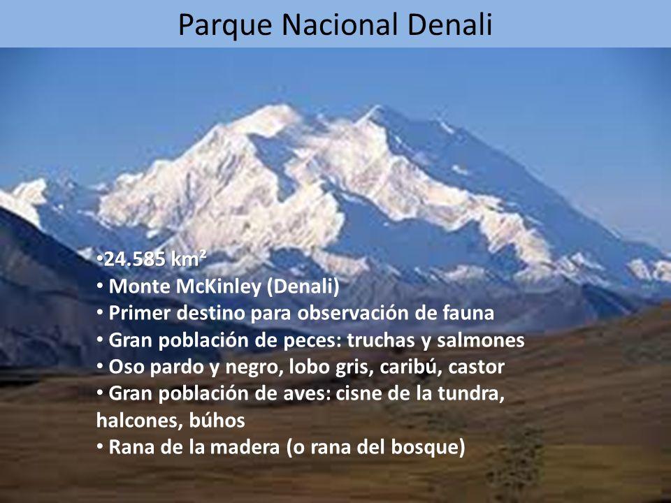 Parque Nacional Denali 24.585 km² 24.585 km² Monte McKinley (Denali) Primer destino para observación de fauna Gran población de peces: truchas y salmo