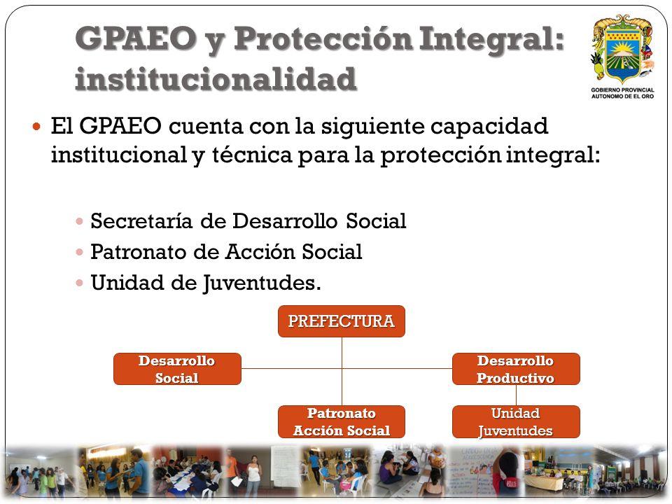 GPAEO y Protección Integral: institucionalidad El GPAEO cuenta con la siguiente capacidad institucional y técnica para la protección integral: Secreta