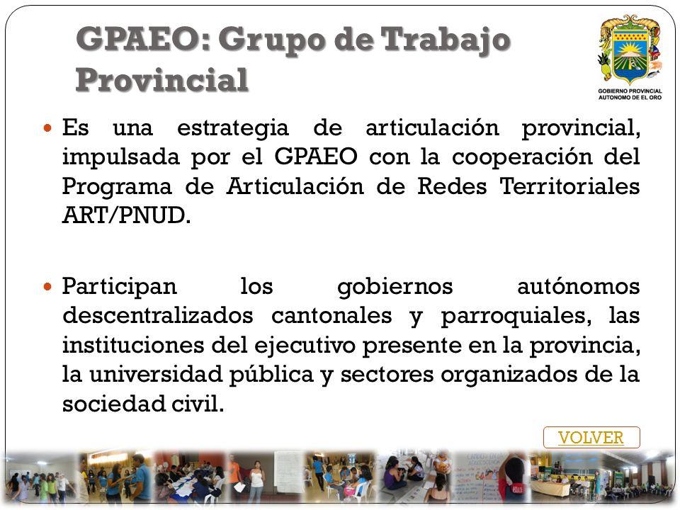 GPAEO: Grupo de Trabajo Provincial Es una estrategia de articulación provincial, impulsada por el GPAEO con la cooperación del Programa de Articulació