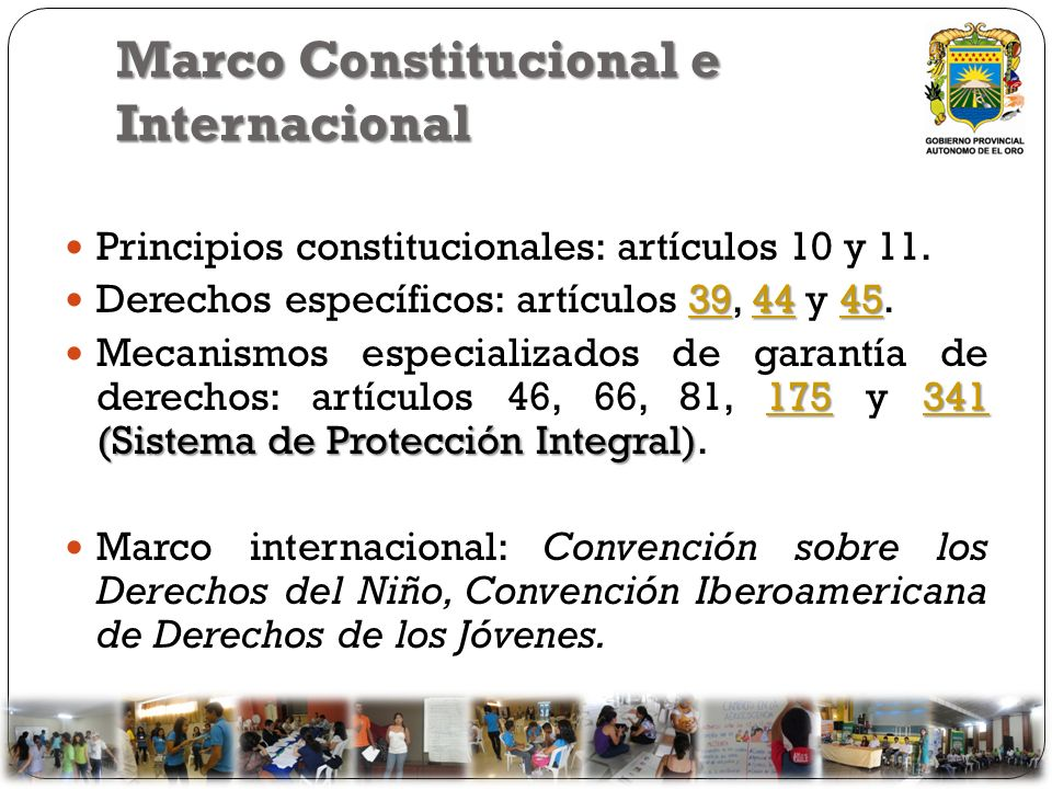Marco Constitucional e Internacional Principios constitucionales: artículos 10 y 11. 394445 394445 Derechos específicos: artículos 39, 44 y 45.394445